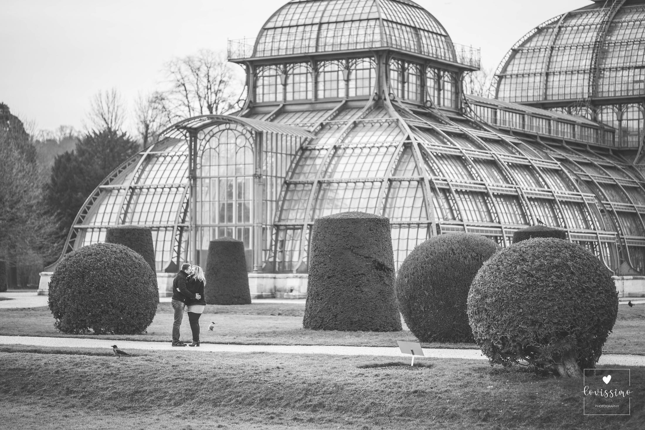 Sesja zdjęciowa w Wiedniu, sesja narzeczeńska, fotograf ślubny Wiedeń